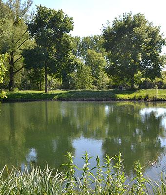 Pêche étang Amiens